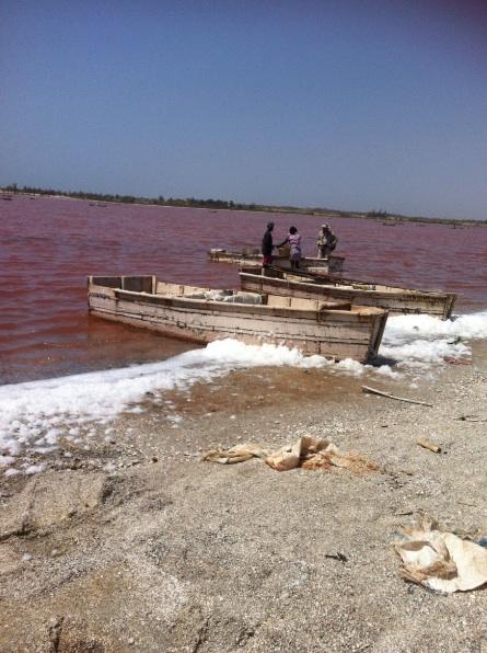 """Récolte du sel au lac Retba ou """"lac rose"""""""