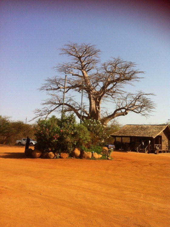 Sénégal, Réserve de Bandia