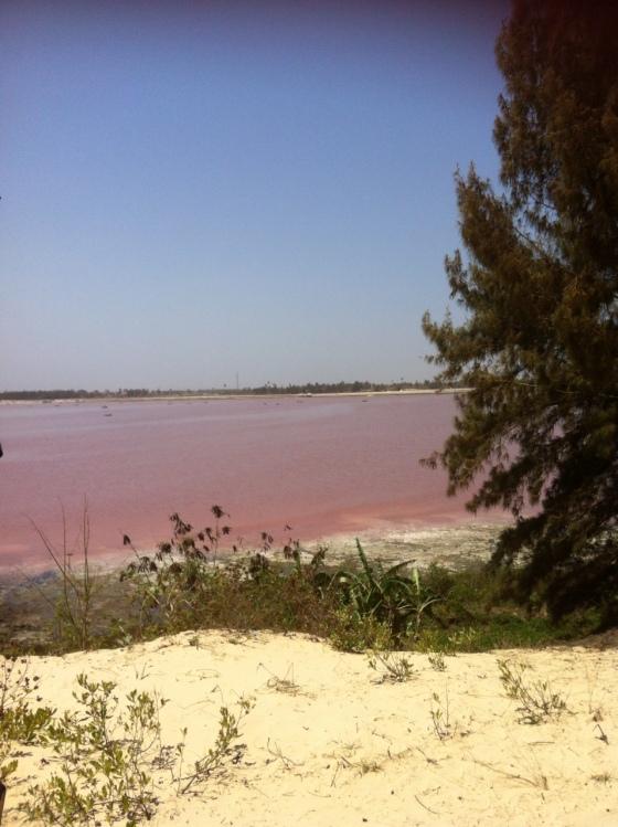 "Le lac Retba ou ""lac rose"""