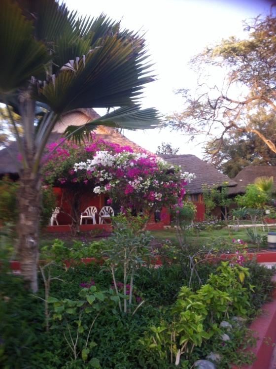 Jardin et Bungalows, Hôtel Royal Baobab